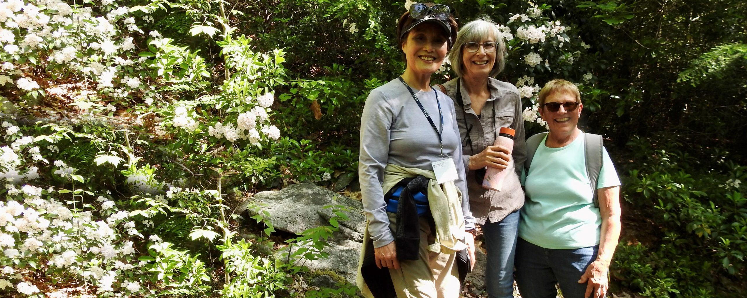 Members hiking at Black Moshannon State Park
